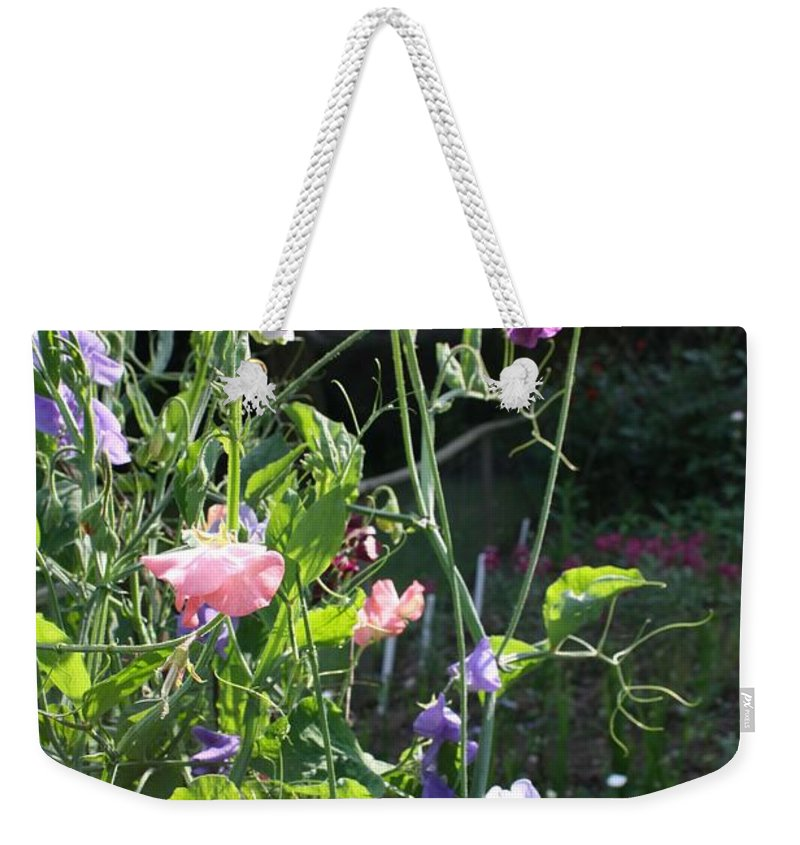 Sweet Peas Weekender Tote Bag featuring the photograph Sweet Pea Climbers by Vicki Cridland