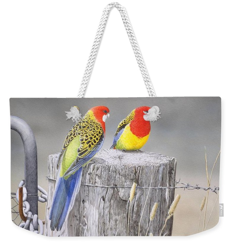 Bird Weekender Tote Bag featuring the painting Waiting for the Rains - Eastern Rosellas by Frances McMahon