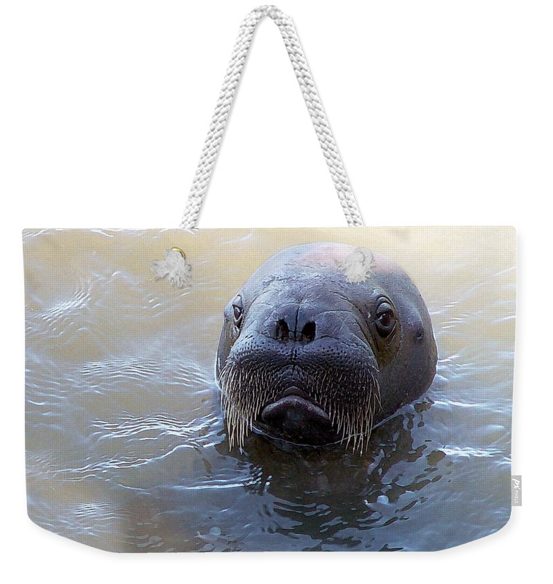 Walrus Weekender Tote Bag featuring the photograph Walrus Calve Portrait - Paintography by Anthony Jones