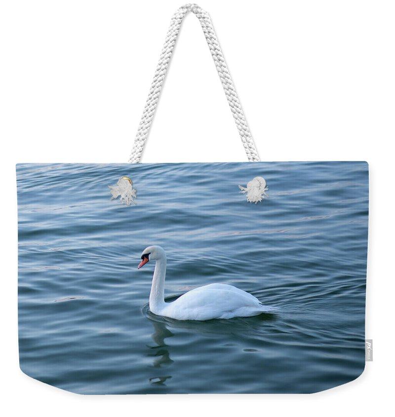 Swan Weekender Tote Bag featuring the photograph White swan by Maria Rzeszotarska