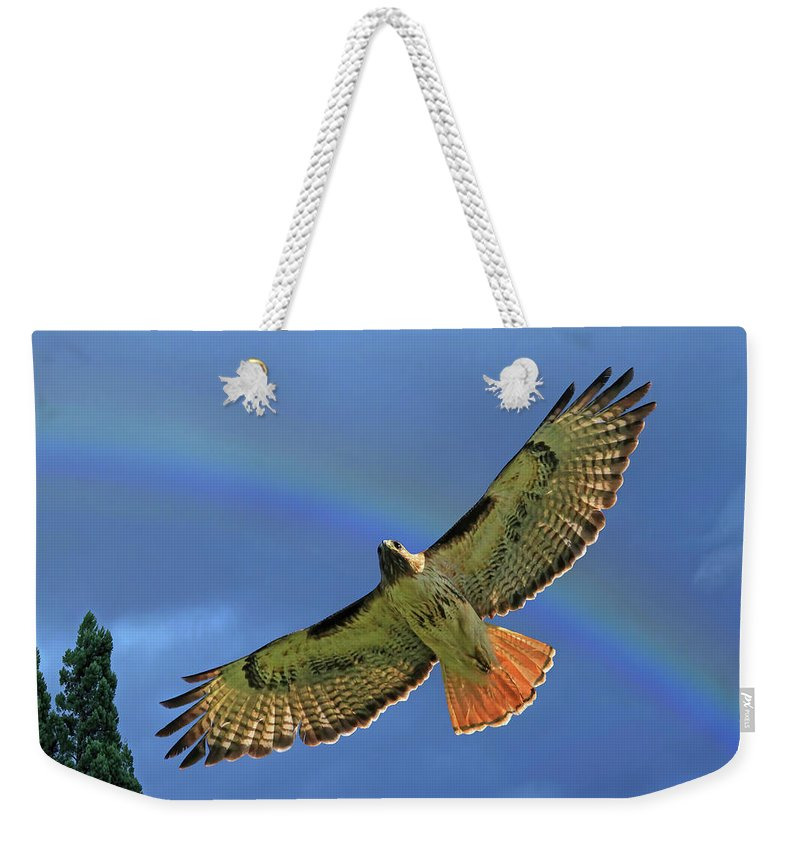 Red Tail Hawk Weekender Tote Bag featuring the photograph Wings 2 by Donna Kennedy