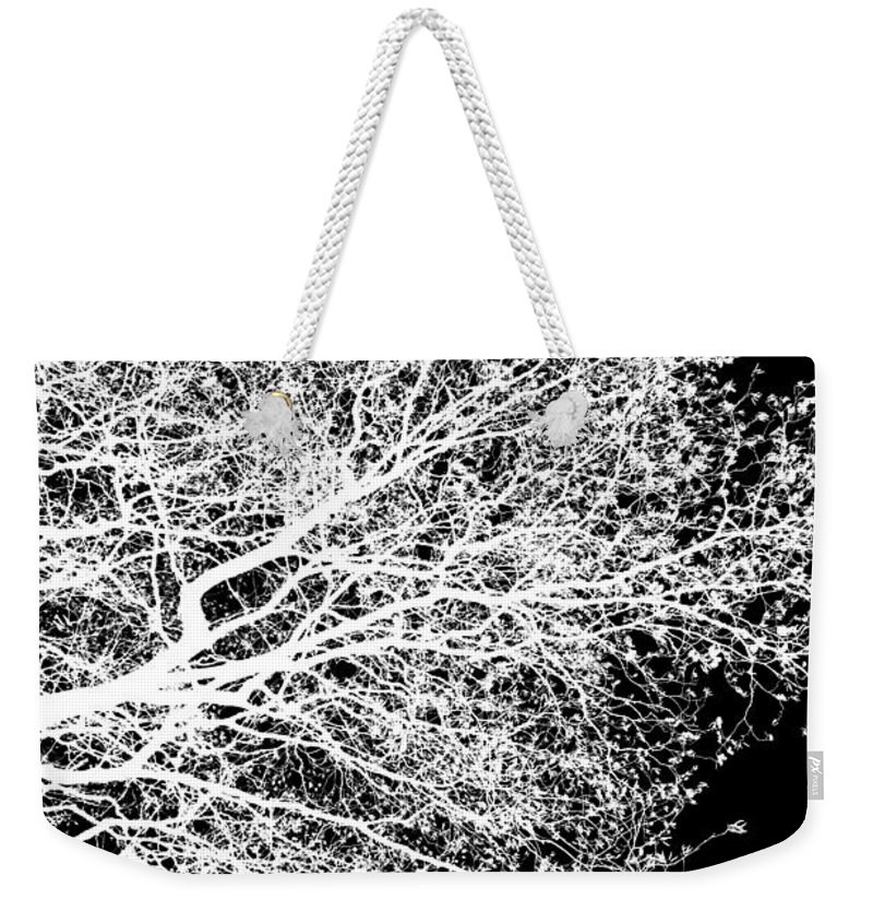 Alder Weekender Tote Bag featuring the photograph Winter alder 1, monochrome inverted by Paul Boizot