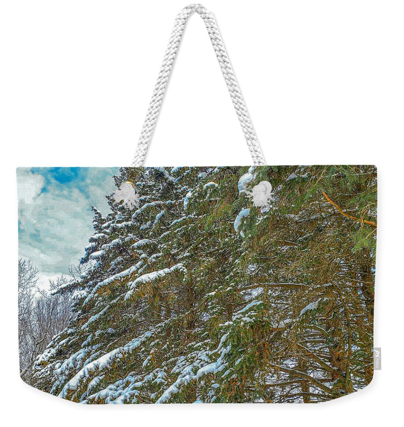Nature Weekender Tote Bag featuring the photograph Winter trees by M Forsell