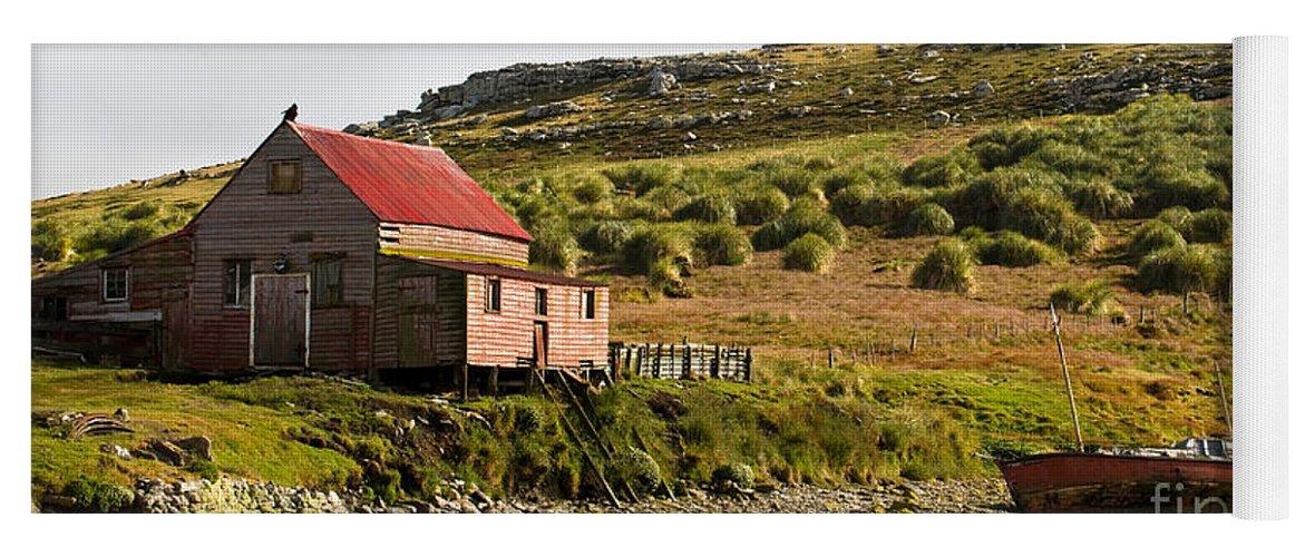 Falkland Islands Yoga Mat featuring the photograph Falkland Island Farm by John Shaw