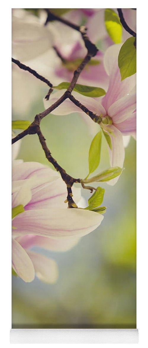 Magnolia Yoga Mat featuring the photograph Magnolia Flowers by Nailia Schwarz