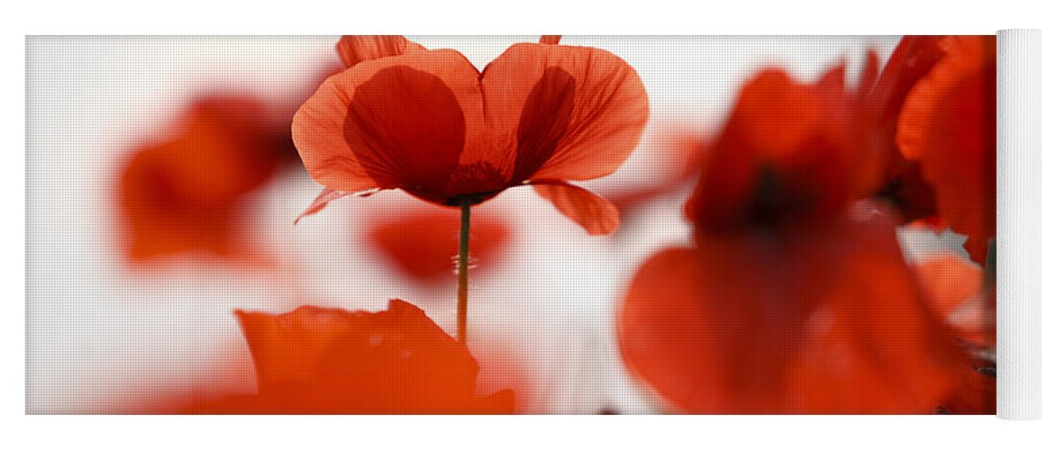 Red Poppy Flowers Yoga Mat For Sale By Nailia Schwarz