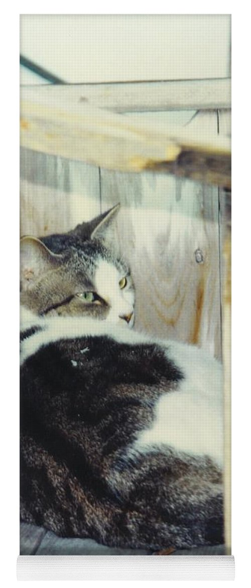 Framed By A Box Yoga Mat featuring the photograph Emmie by Robert Floyd