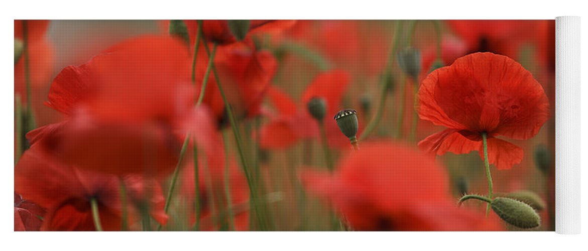 Poppy Yoga Mat featuring the photograph Red by Nailia Schwarz