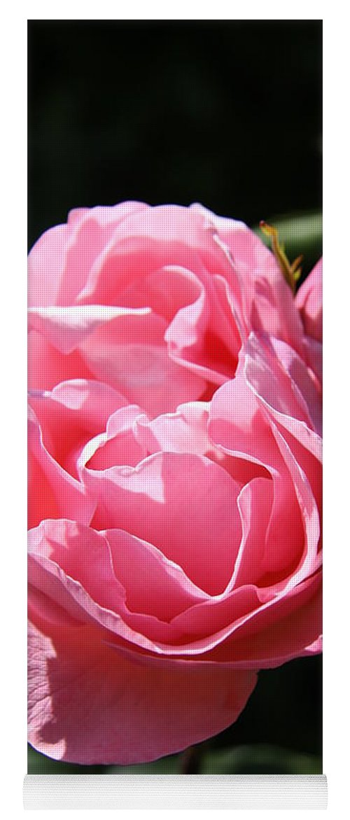 Rose Yoga Mat featuring the photograph All Shades Of Pink by Christiane Schulze Art And Photography
