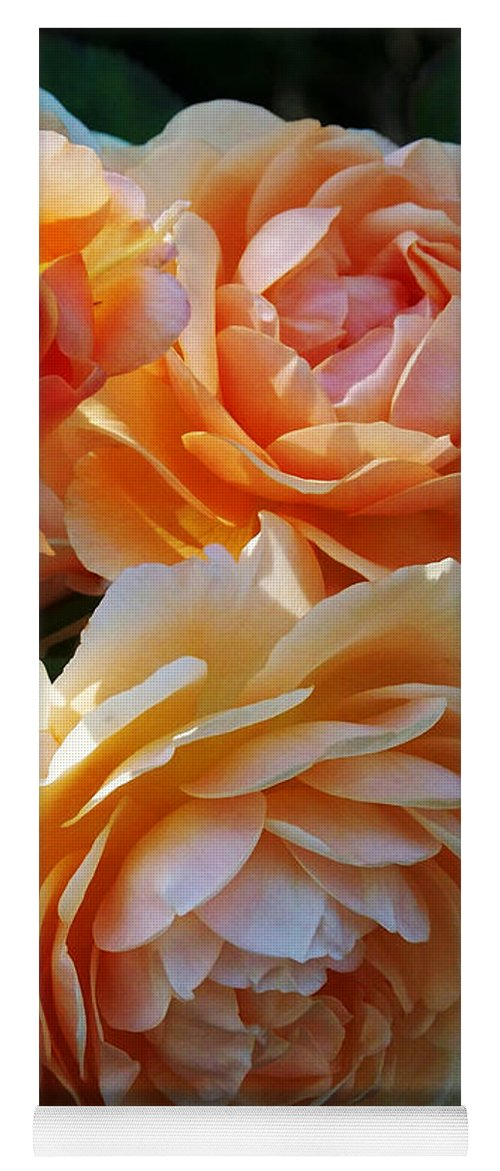 Flowers. Plants Yoga Mat featuring the photograph Apricot Dahlias by Kathy McClure