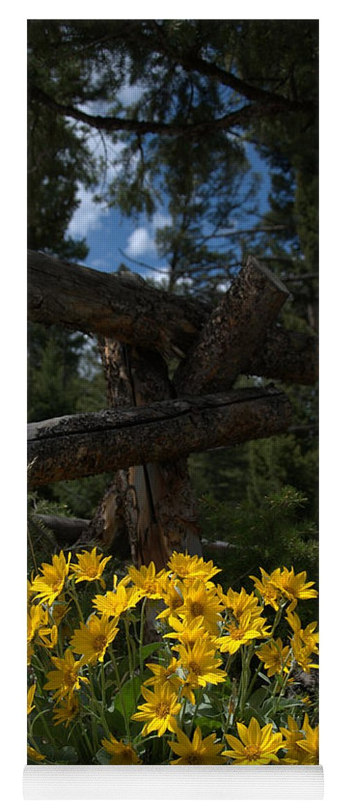 Yellow Yoga Mat featuring the photograph Arrowleaf Balsam Root by Frank Madia
