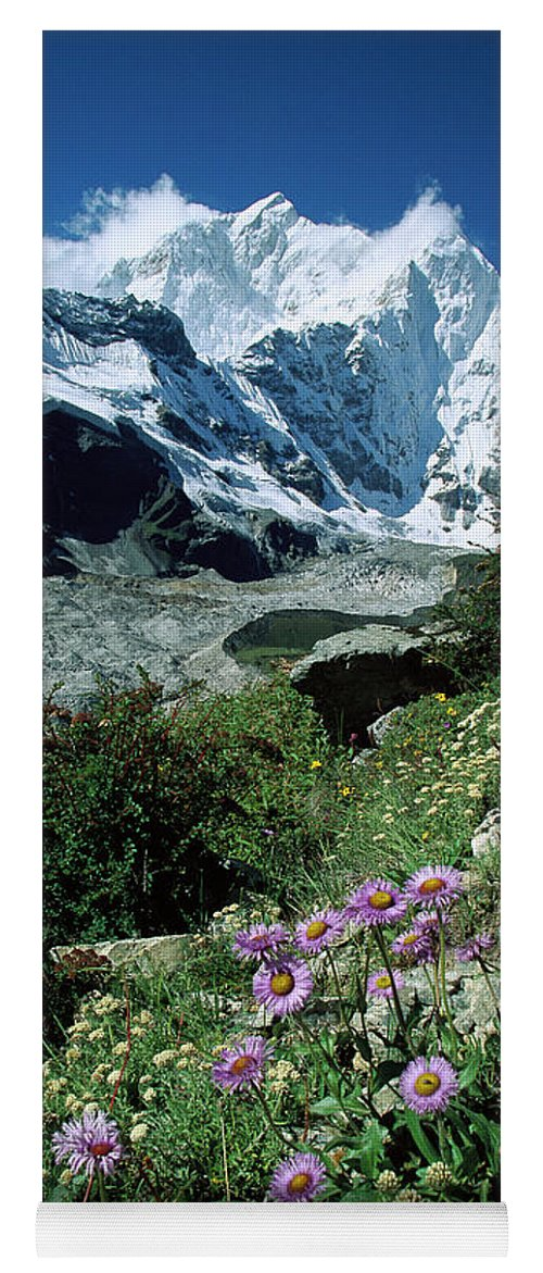 00260106 Yoga Mat featuring the photograph Aster Daisies at Mt. Chomolonzo by Colin Monteath