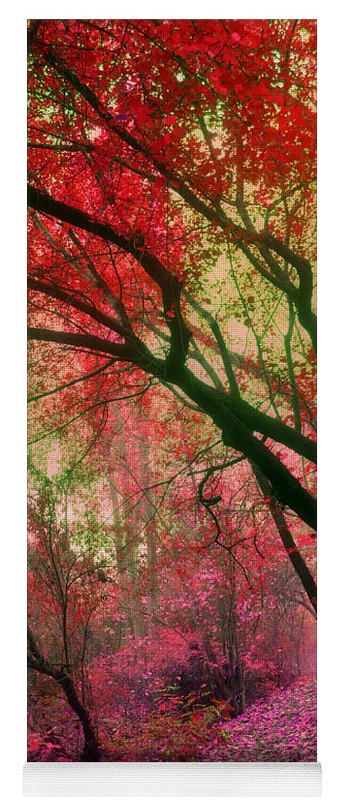 Red Yoga Mat featuring the photograph Autumn Dreams by Tara Turner