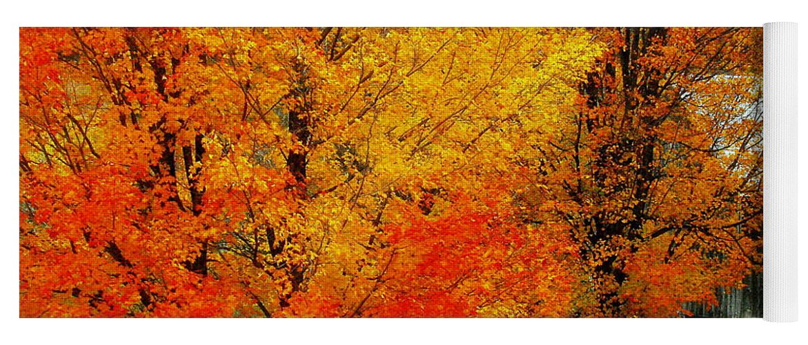 Autumn Yoga Mat featuring the photograph Autumn Trees By Barn by Rodney Lee Williams