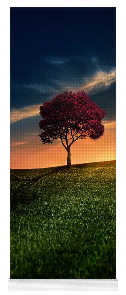 Agriculture Yoga Mat featuring the photograph Awesome Solitude by Bess Hamiti