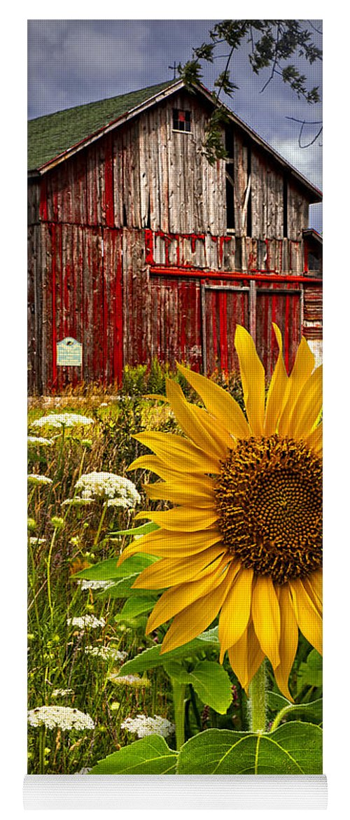 Barn Yoga Mat featuring the photograph Barn Meadow Flowers by Debra and Dave Vanderlaan