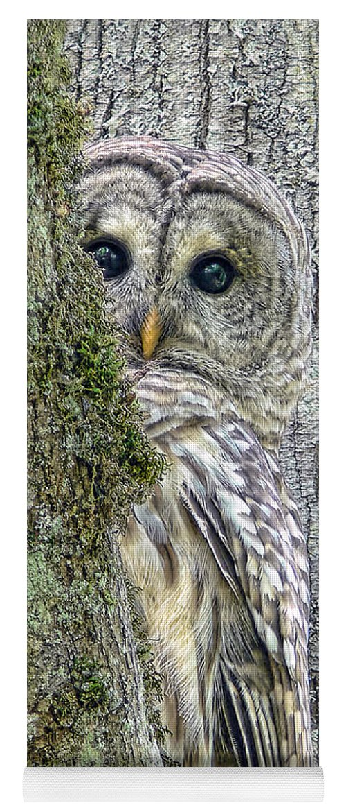 Owl Yoga Mat featuring the photograph Barred Owl Peek A Boo by Jennie Marie Schell