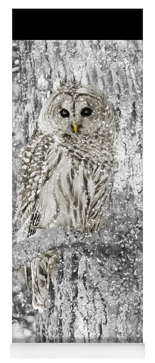Owl Yoga Mat featuring the photograph Barred Owl Snowy Day In The Forest by Jennie Marie Schell