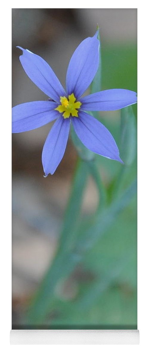 Blue Yoga Mat featuring the photograph Blue Flower by Frank Madia