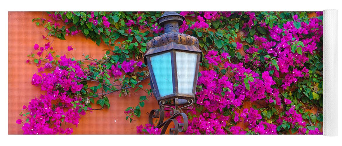 Travel Yoga Mat featuring the photograph Bougainvillea And Lamp, Mexico by John Shaw