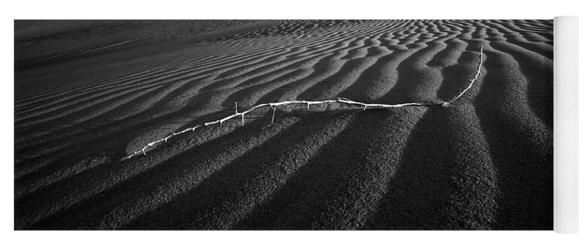 Black & White Yoga Mat featuring the photograph Branch Out In The Desert by Peter Tellone