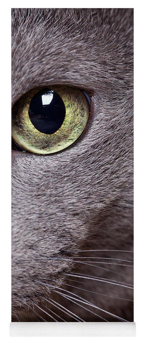 Cat Yoga Mat featuring the photograph Cat Eye by Nailia Schwarz