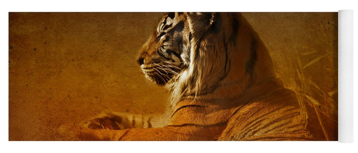 Tiger Yoga Mat featuring the photograph Don't Wake A Sleeping Tiger by Betty LaRue