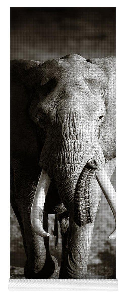 Elephant Yoga Mat featuring the photograph Elephant Bull by Johan Swanepoel