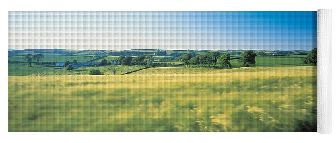 Photography Yoga Mat featuring the photograph Field Near Barnstaple, North Devon by Panoramic Images