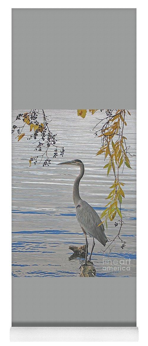 Heron Yoga Mat featuring the photograph Great Blue Heron by Ann Horn