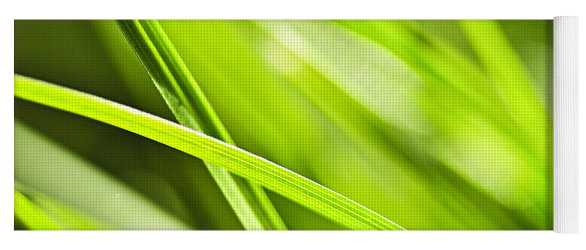 Grass Yoga Mat featuring the photograph Green Grass Abstract by Elena Elisseeva