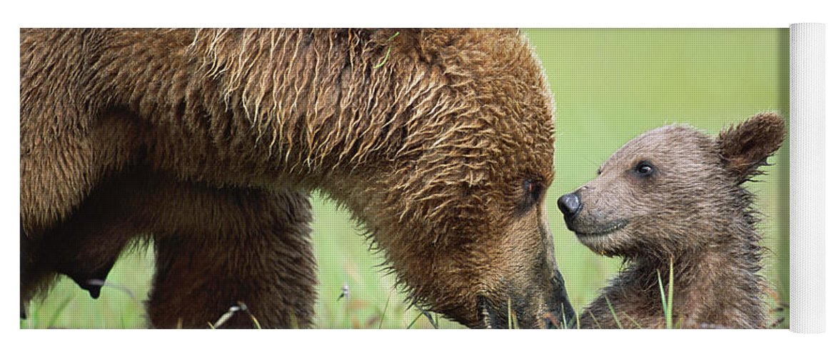 00345260 Yoga Mat featuring the photograph Grizzly Bear And Cub in Katmai by Yva Momatiuk John Eastcott