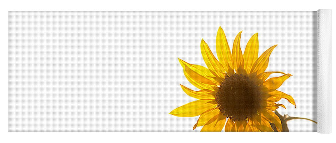 California Yoga Mat featuring the photograph Hello Yellow by Peter Tellone