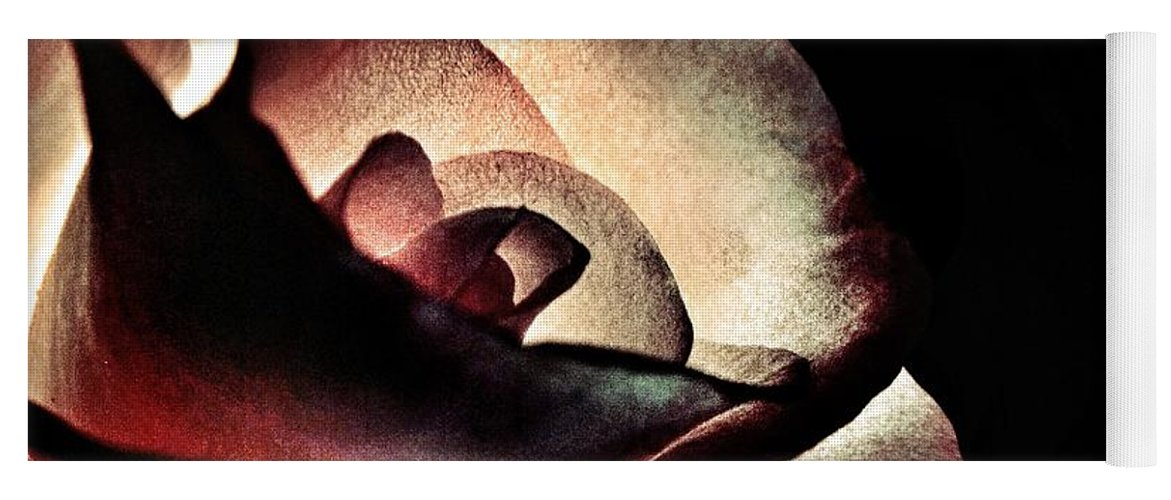 Illuminated Yoga Mat featuring the photograph Illuminated Rose by Marianna Mills