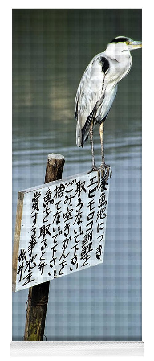 Japan Yoga Mat featuring the photograph Japanese Waterfowl - Kyoto Japan by Daniel Hagerman