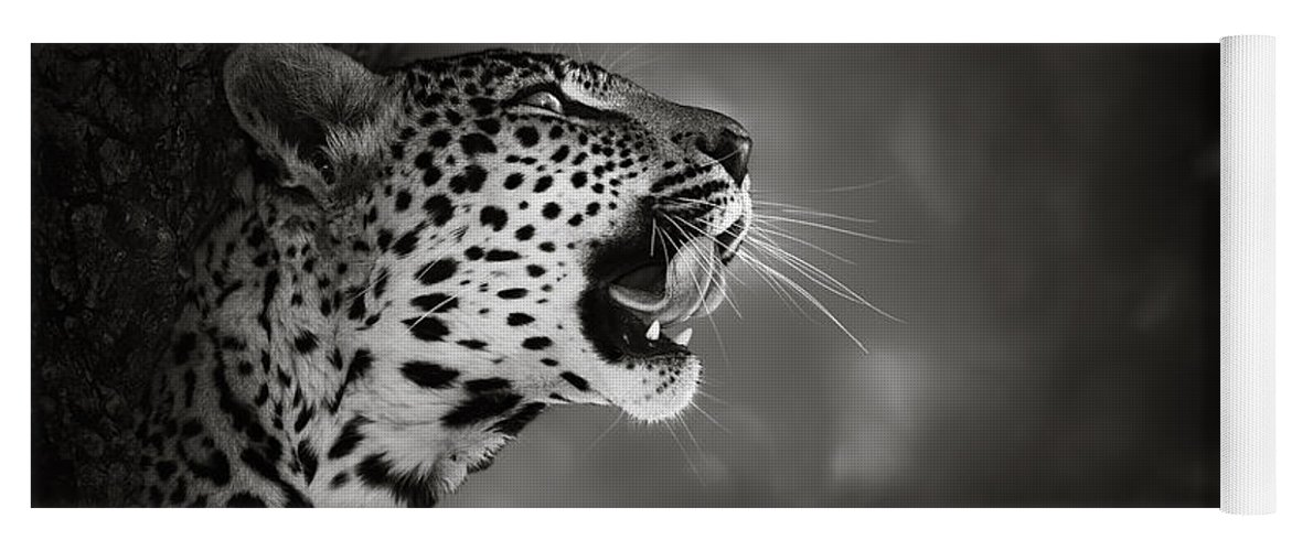 Leopard Yoga Mat featuring the photograph Leopard Portrait by Johan Swanepoel