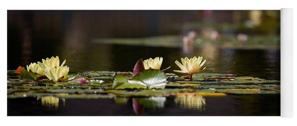 Waterlily Yoga Mat featuring the photograph Lily Pond by Peter Tellone