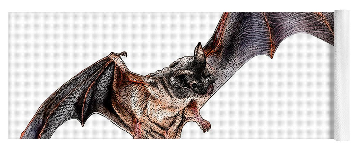 Illustration Yoga Mat featuring the photograph Mexican Free-tailed Bat by Roger Hall
