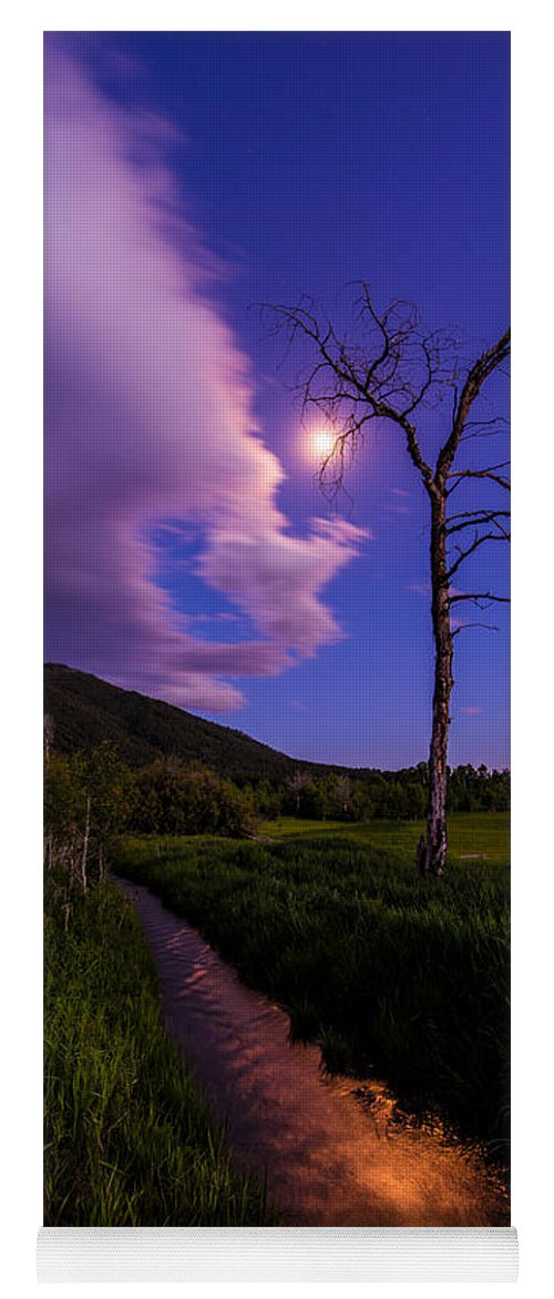 Wyoming Yoga Mat featuring the photograph Moonlight Meadow by Chad Dutson