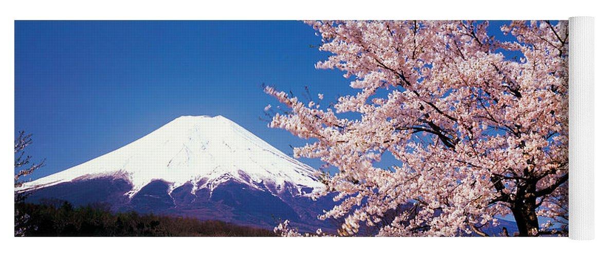 Mt Fuji Cherry Blossoms Yamanashi Japan Yoga Mat
