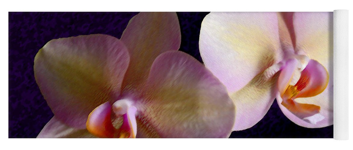 Orchid Yoga Mat featuring the photograph Orchid Light by Steve Karol