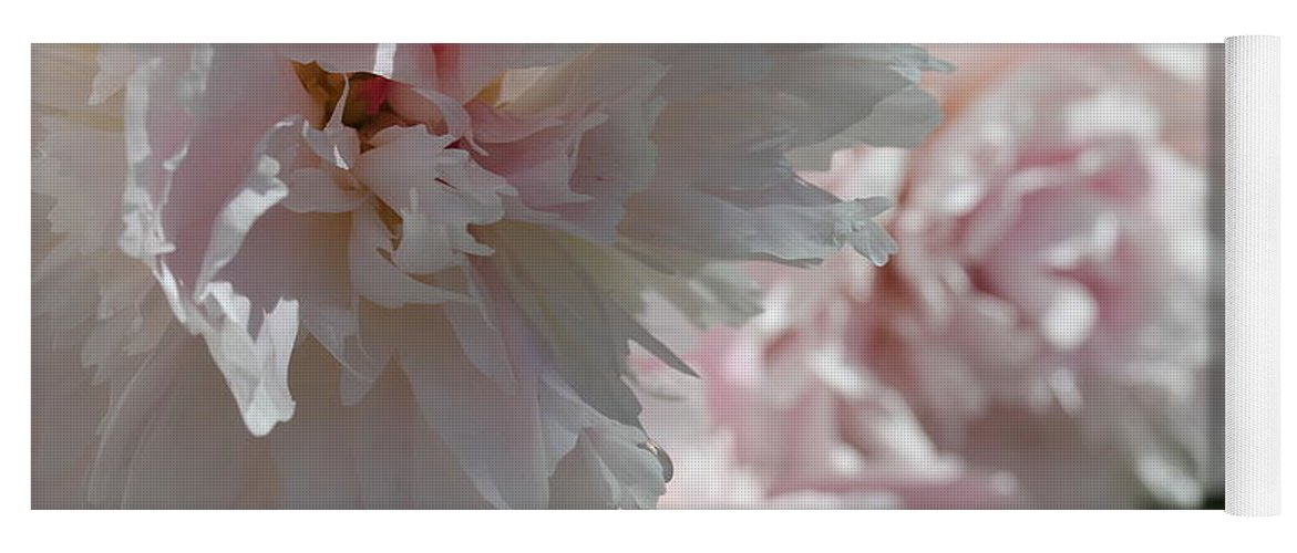 Peony Yoga Mat featuring the photograph Pink Confection by Ruth Kamenev