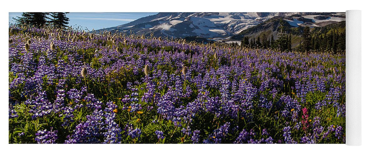 Rainier Yoga Mat featuring the photograph Purple Fields Forever And Ever by Mike Reid