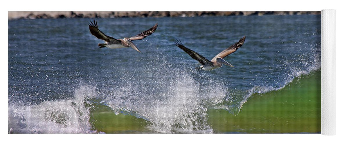 Pelican Yoga Mat featuring the photograph Scouting For A Catch by Betsy Knapp