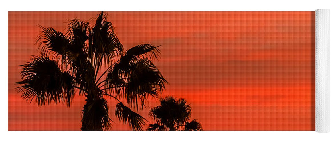 Sunrise Yoga Mat featuring the photograph Silhouetted Palm Trees by Robert Bales