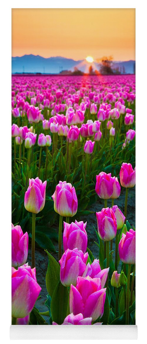 America Yoga Mat featuring the photograph Skagit Valley Dawn by Inge Johnsson
