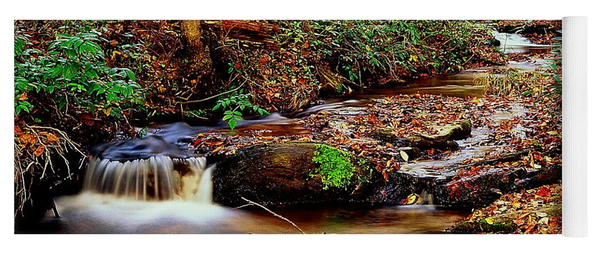 Fine Art Yoga Mat featuring the photograph Small Waterfall And Stream 2 by Rodney Lee Williams