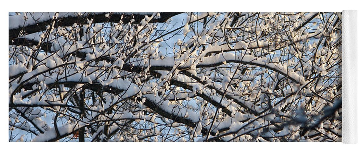 Snow Yoga Mat featuring the photograph Snow Covered Branches 2 by Teresa Mucha