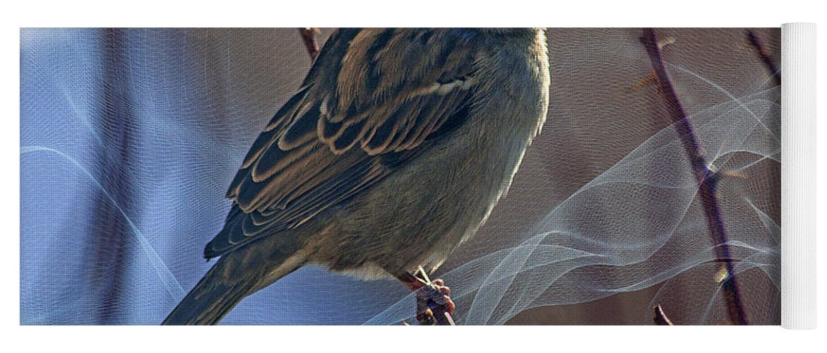 Sparrow Yoga Mat featuring the photograph Sparrow In A Weave by Janice Pariza