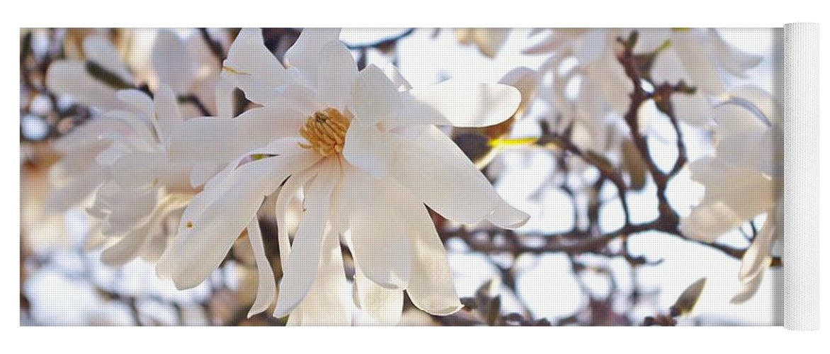 Magnolia Stellata Yoga Mat featuring the photograph Spring Flowers by Sharon Popek